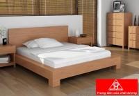 Giường ngủ gỗ tự nhiên đẹp mẫu đơn giản